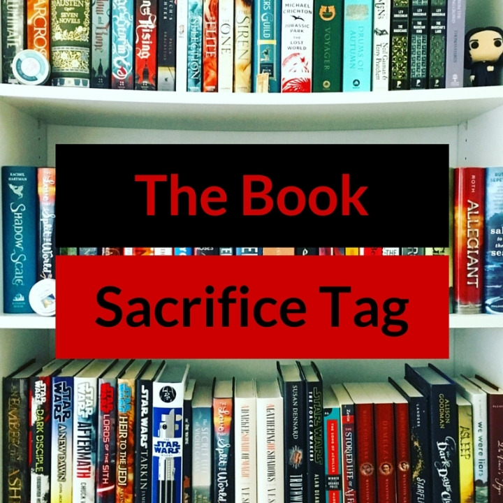 Burn, Rewrite, or Reread Book Tag