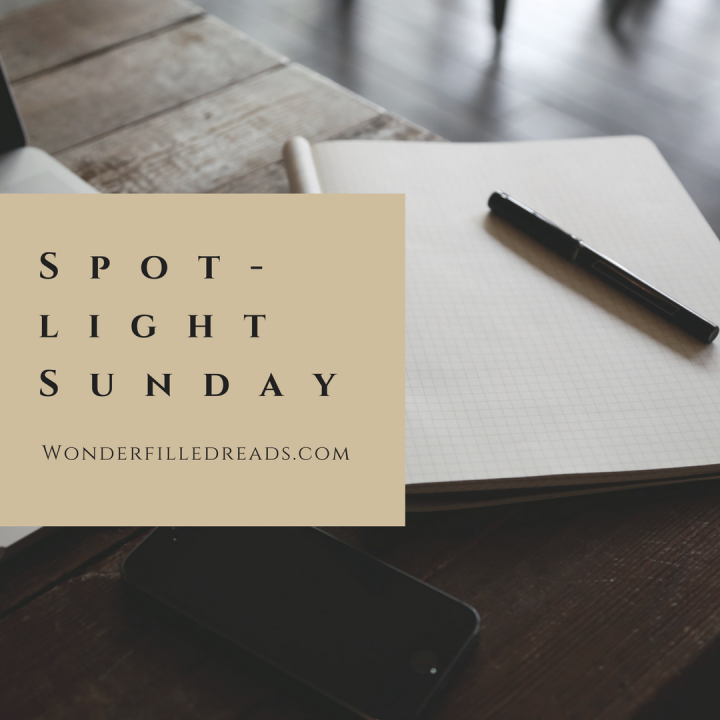 Spotlight Sunday – November 13th, 2016